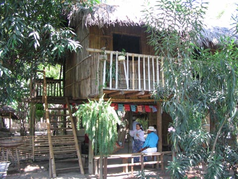 A bamboo house on stilts